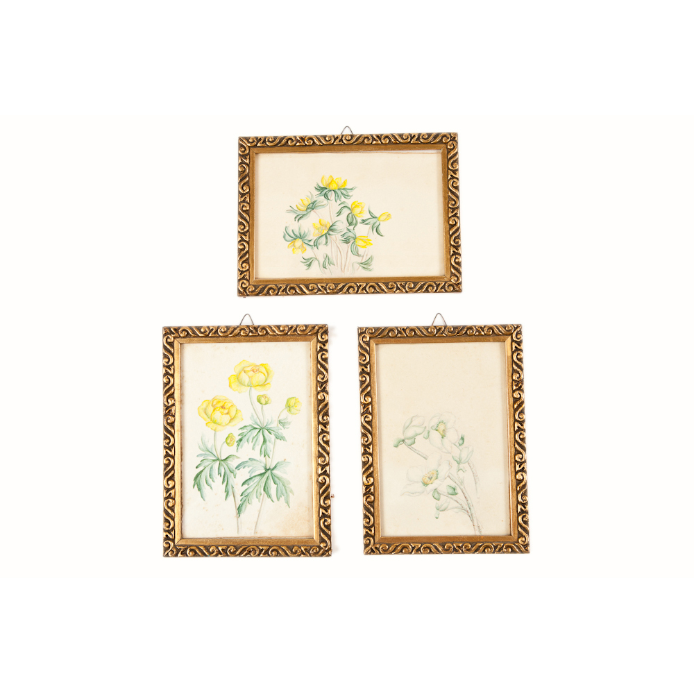 Set of Three Floral Watercolors with Giltwood Picture Frames (SOLD ...